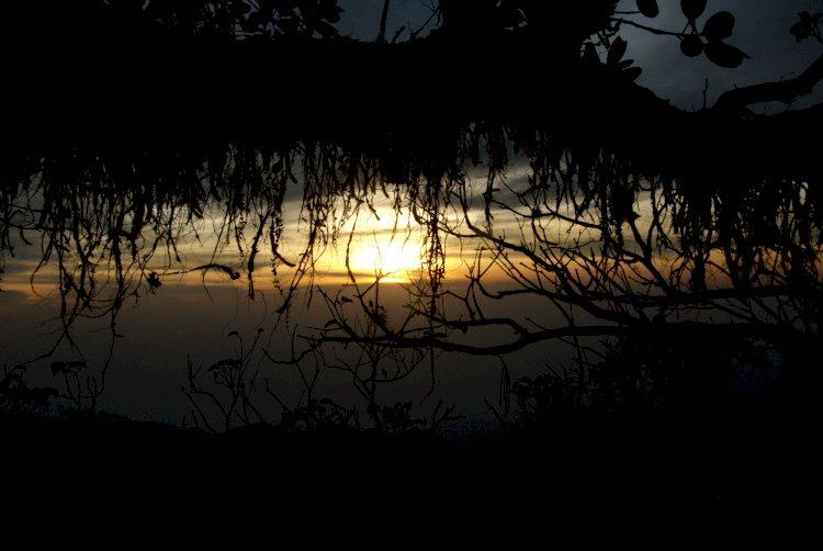 An Evening in Vellarimala
