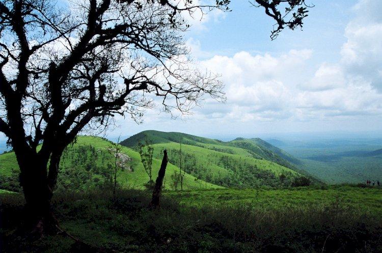 A Quaint Hilly retreat : Himavat Gopalaswamy  Betta