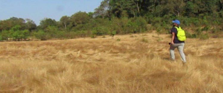 On the grasslands at Karani to Belligundi waterfalls