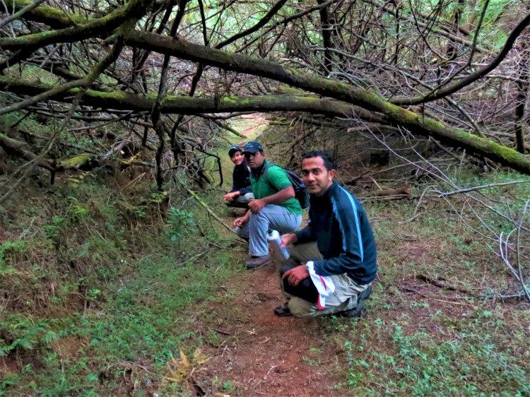 Mukurthi trek trail
