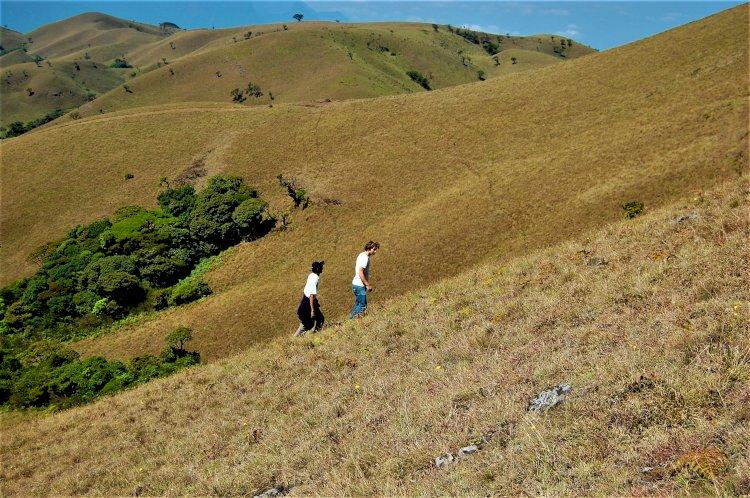 Climbing Mukurthi peak