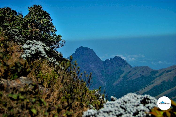 Niligiri peak seen from Mukurthi peak