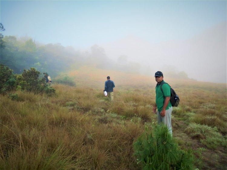 On the grasslands Mukurthi trek