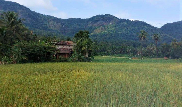 Koti Lingeswara temple
