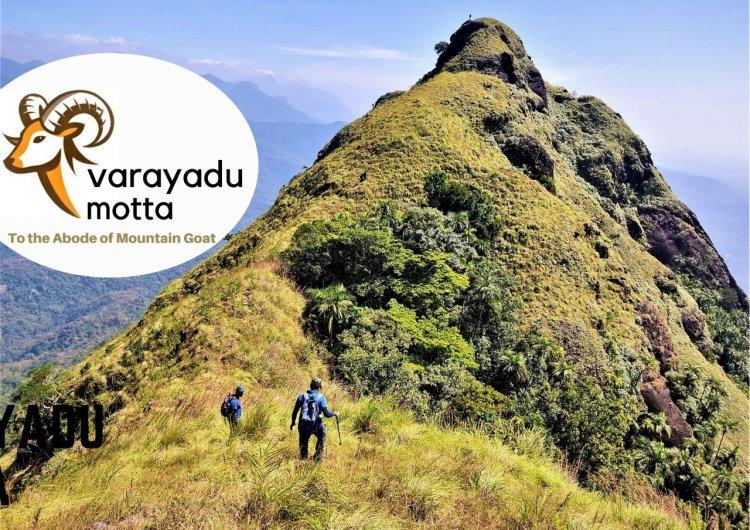 Varayadumotta - To the Abode of  Nilgiri Tahr