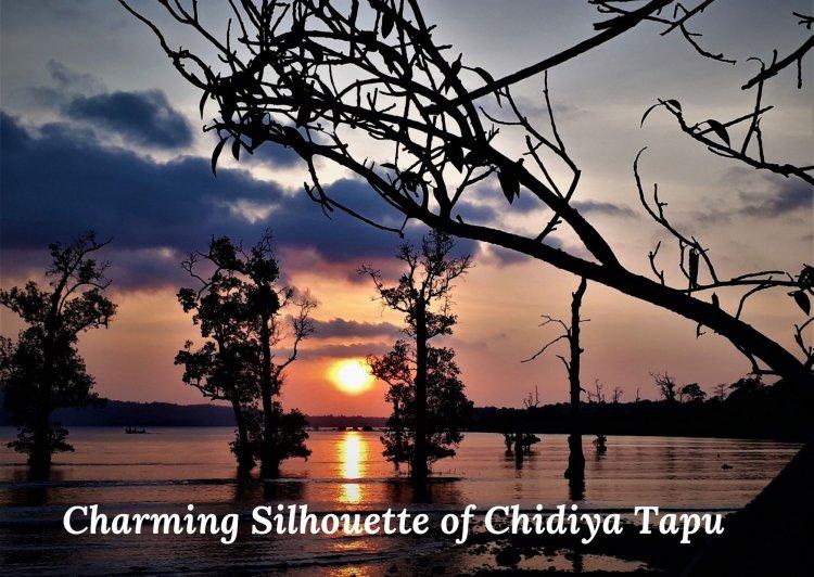 Charming Silhouette of Chidiya Tapu